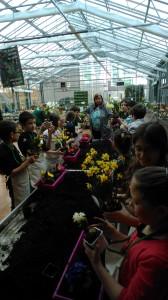 CE2 CM1 semaine du jardinage 7 ecole Jeanne d'arc